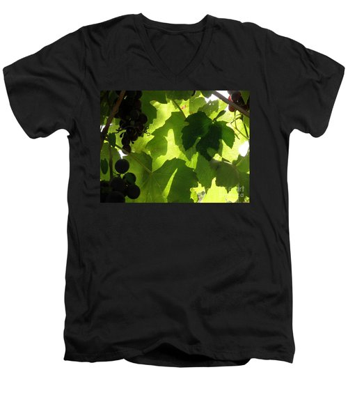 Shadow Dancing Grapes Men's V-Neck T-Shirt by Lainie Wrightson