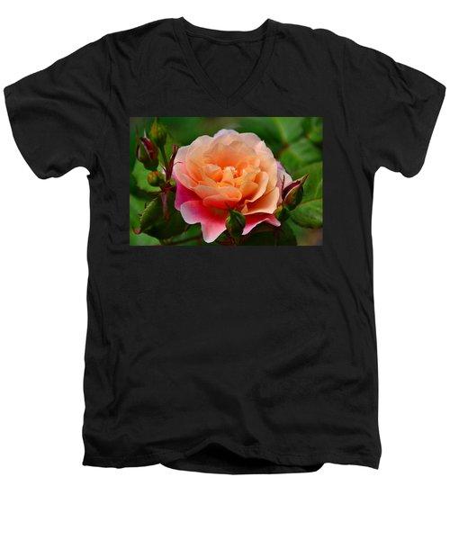 Sherbet Rose Men's V-Neck T-Shirt