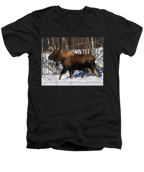 Men's V-Neck T-Shirt featuring the photograph Snow Moose by Doug Lloyd