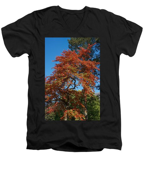 Men's V-Neck T-Shirt featuring the photograph Soaring Fall by Joseph Yarbrough