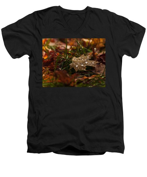 Men's V-Neck T-Shirt featuring the photograph Sparkling Gems by Cheryl Baxter