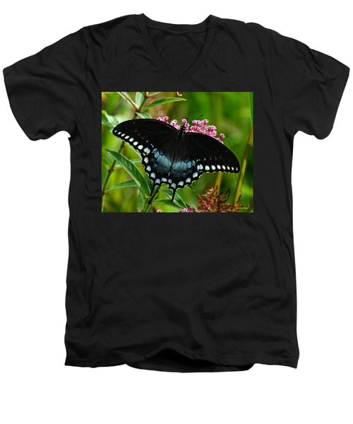 Spicebush Swallowtail Din038 Men's V-Neck T-Shirt