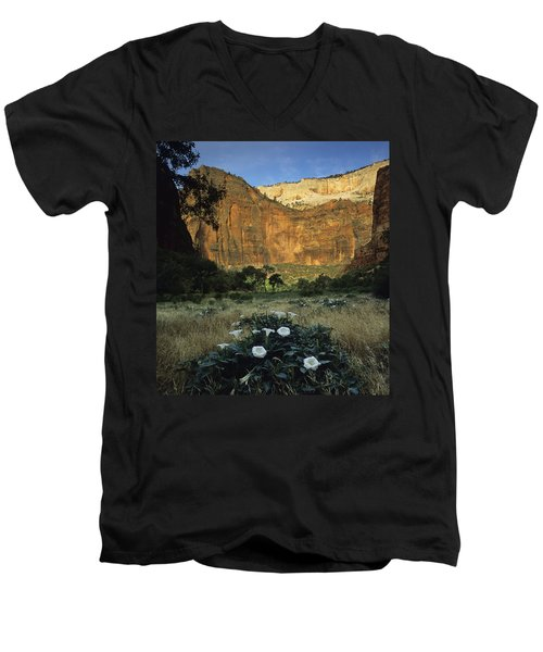 Spring At Big Bend Men's V-Neck T-Shirt