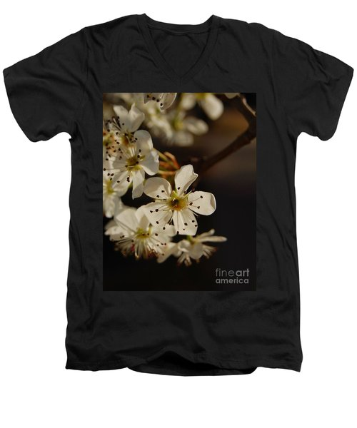 Spring Blossoms I Men's V-Neck T-Shirt