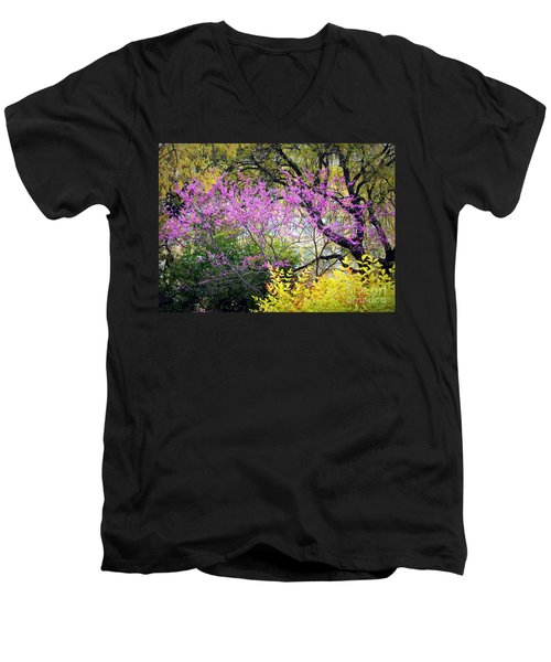 Spring Trees In San Antonio Men's V-Neck T-Shirt