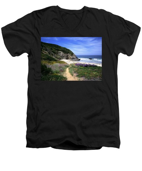 Springtime Trail  Dana Point Headlands Men's V-Neck T-Shirt