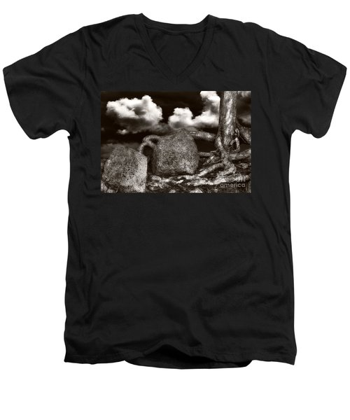 Stones And Roots Men's V-Neck T-Shirt