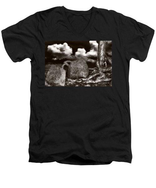 Stones And Roots Men's V-Neck T-Shirt by Ari Salmela