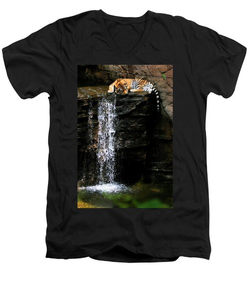 Strength At Rest Men's V-Neck T-Shirt
