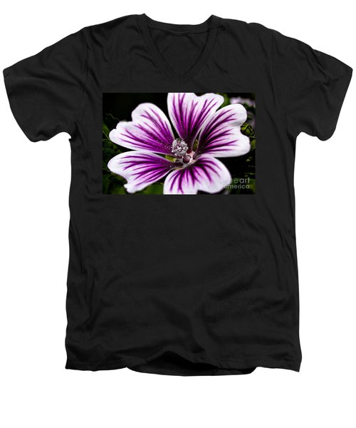 Men's V-Neck T-Shirt featuring the photograph Stripped Blossom by Larry Carr