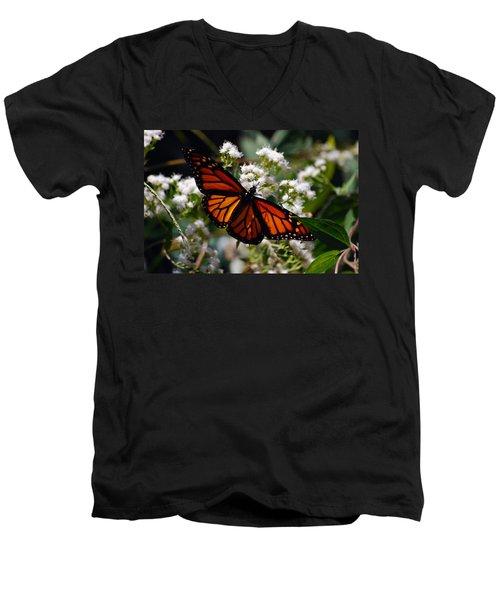 Summers Treat Men's V-Neck T-Shirt