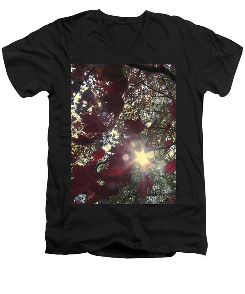 Men's V-Neck T-Shirt featuring the photograph Sun Shine Through by Donna Brown