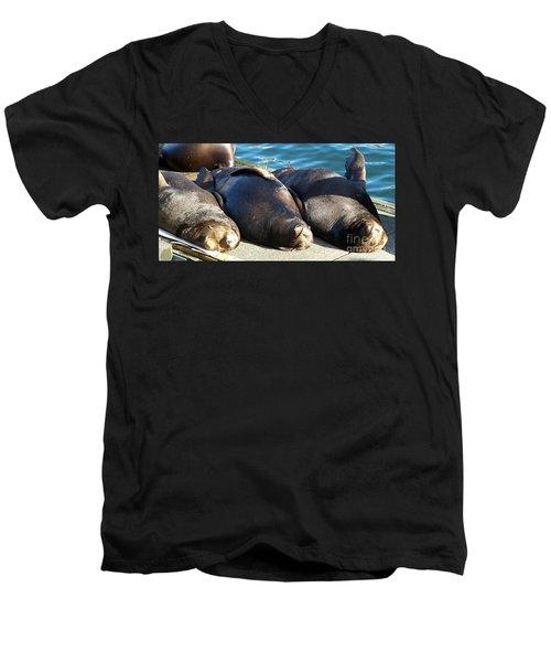 Sunbathing Sea Lions Men's V-Neck T-Shirt by Chalet Roome-Rigdon