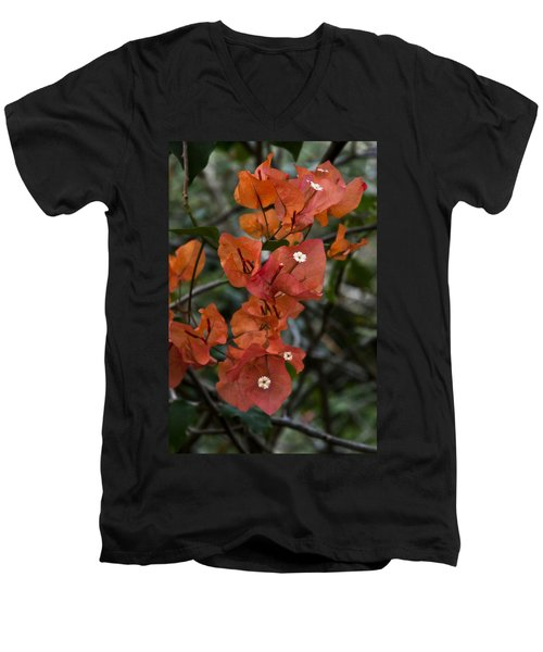 Men's V-Neck T-Shirt featuring the photograph Sundown Orange by Steven Sparks