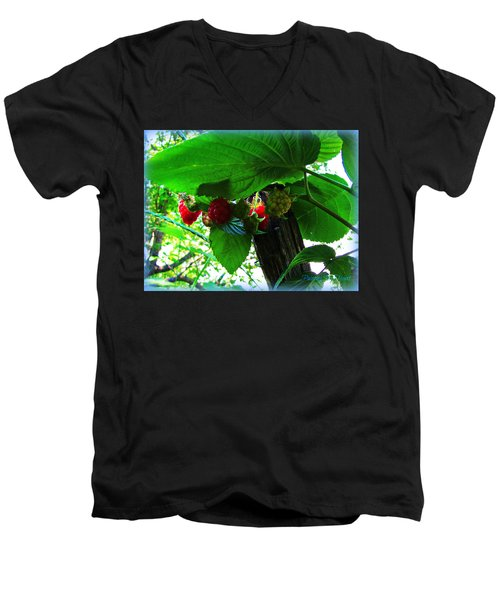 Sweet N Juicy Men's V-Neck T-Shirt