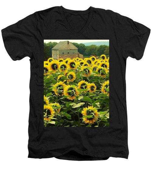 Tall Sunflowers Men's V-Neck T-Shirt