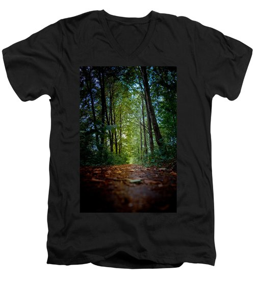 The Pathway In The Forest Men's V-Neck T-Shirt