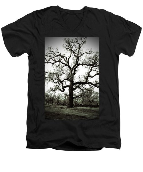 The Tree Men's V-Neck T-Shirt by Holly Blunkall