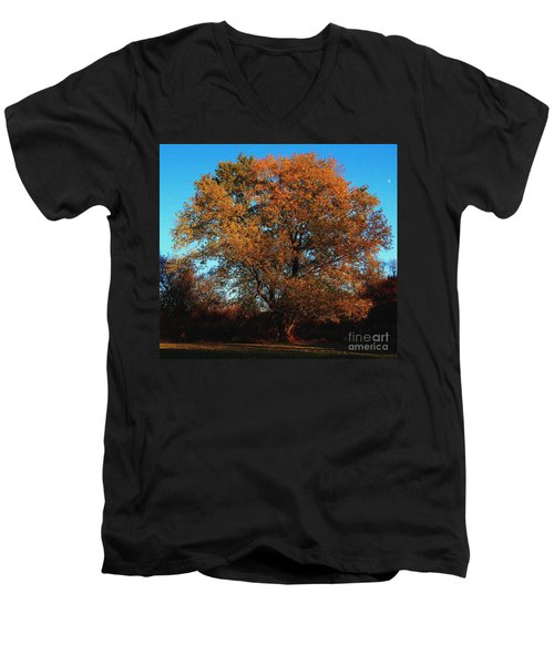 The Tree Of Life Men's V-Neck T-Shirt