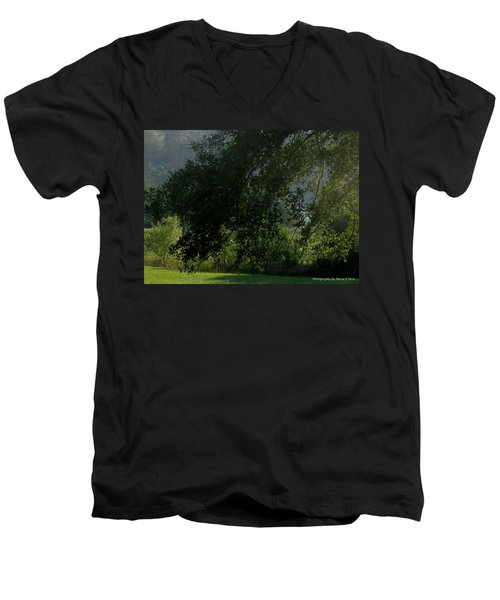 Men's V-Neck T-Shirt featuring the photograph This Ole Tree by Maria Urso