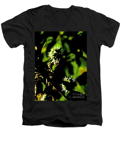 Men's V-Neck T-Shirt featuring the photograph Touched By The Late Afternoon Sun by Steve Taylor