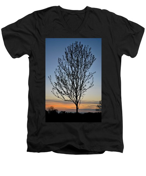 Tree At Sunset Men's V-Neck T-Shirt