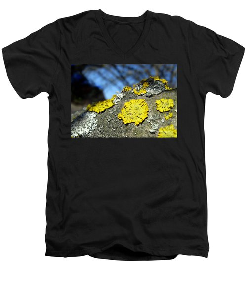 Men's V-Neck T-Shirt featuring the photograph Tree Lichen by Ausra Huntington nee Paulauskaite