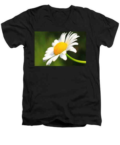 Upturned Daisy Men's V-Neck T-Shirt