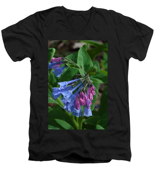 Virginia Bluebells Men's V-Neck T-Shirt
