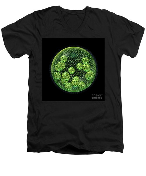 Men's V-Neck T-Shirt featuring the digital art Volvox by Russell Kightley