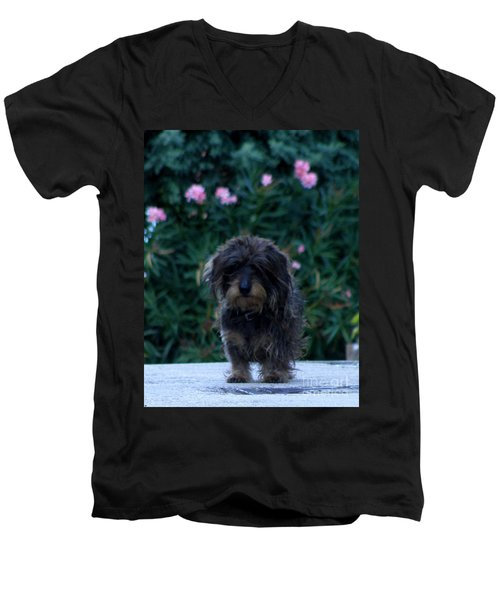 Waiting Men's V-Neck T-Shirt by Lainie Wrightson