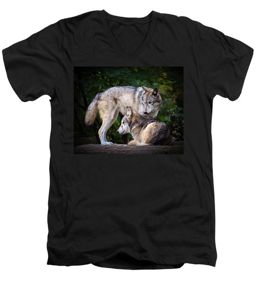 Men's V-Neck T-Shirt featuring the photograph Watching Over by Steve McKinzie