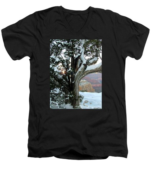 Weather Worn Men's V-Neck T-Shirt