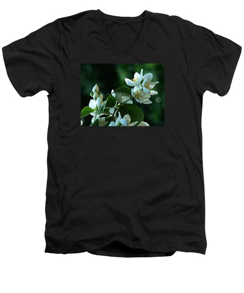 Men's V-Neck T-Shirt featuring the photograph White Buds And Blossoms by Steve Taylor