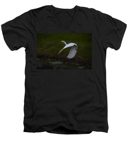 White Egret Men's V-Neck T-Shirt