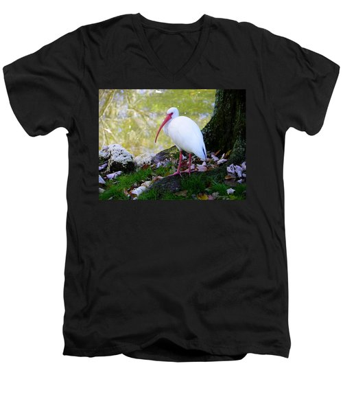 White Ibis Men's V-Neck T-Shirt by Judy Wanamaker