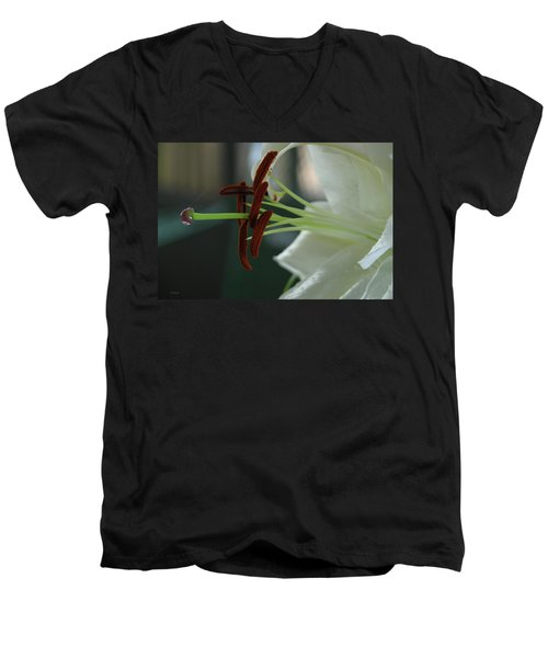 White Tiger Lily II Men's V-Neck T-Shirt