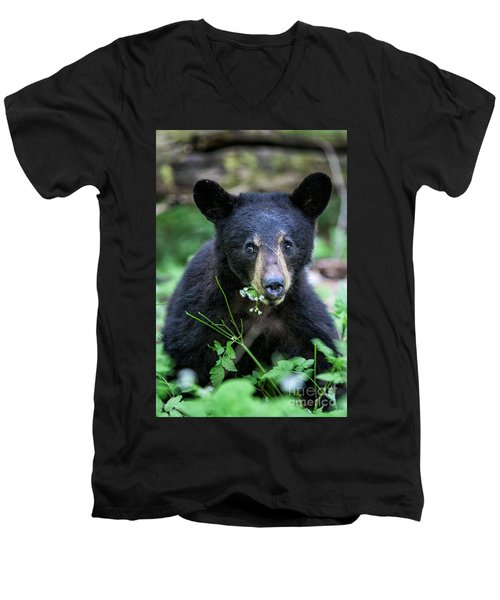 Wildflower Bear Men's V-Neck T-Shirt