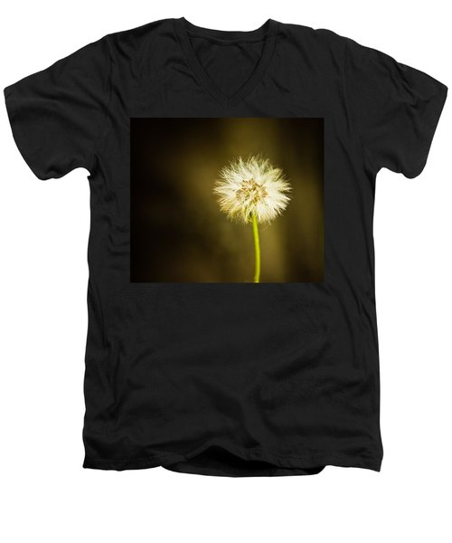 Men's V-Neck T-Shirt featuring the photograph Wishes by Sara Frank