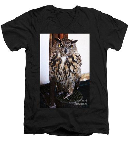 Yellow Owl Eyes Men's V-Neck T-Shirt
