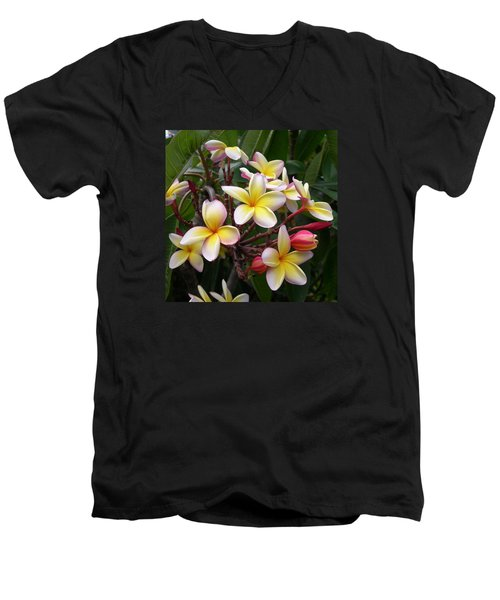 Yellow Plumeria Men's V-Neck T-Shirt