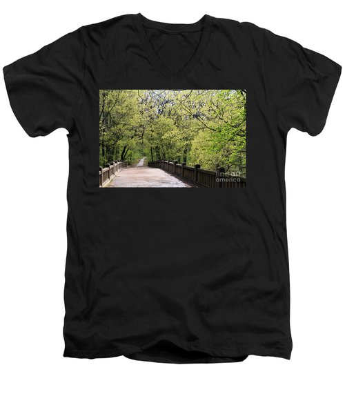 Men's V-Neck T-Shirt featuring the photograph  Matthiessen State Park In Spring by Paula Guttilla