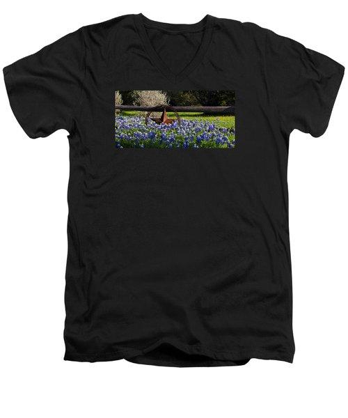 Texas Bluebonnets IIi Men's V-Neck T-Shirt by Greg Reed