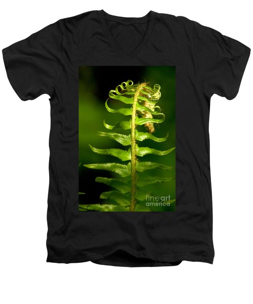 A Light In The Forest Men's V-Neck T-Shirt by Sean Griffin