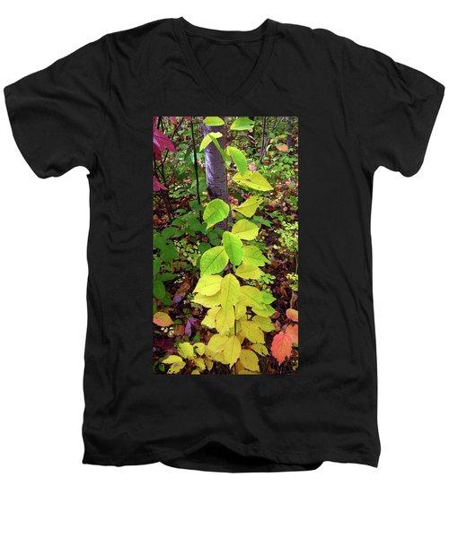 Autumn Leaves II Men's V-Neck T-Shirt