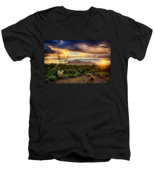 Beauty In The Desert Men's V-Neck T-Shirt