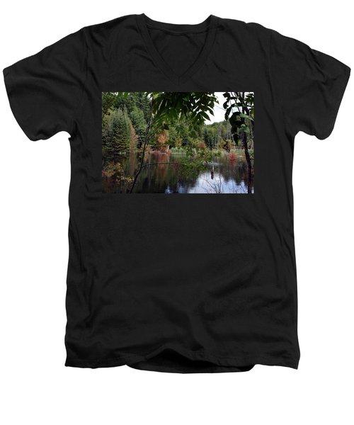 Blueberry Mountain Men's V-Neck T-Shirt