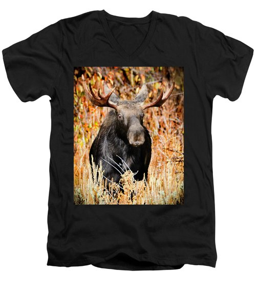 Bull Moose Men's V-Neck T-Shirt