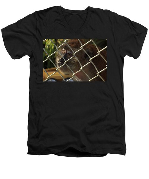 Caged Monkey Men's V-Neck T-Shirt