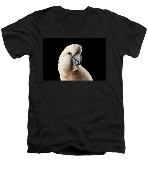 Men's V-Neck T-Shirt featuring the photograph Closeup Head Of Beautiful Moluccan Cockatoo, Pink Salmon-crested Parrot Isolated On Black Background by Sergey Taran